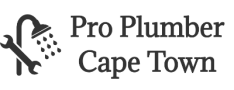 Pro Plumber Cape Town Logo
